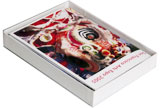 Clear top greeting card presentation boxes red river paper clear top greeting card presentation boxes m4hsunfo